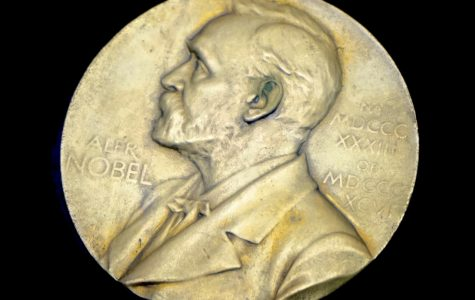 2016 Nobel Prizes Honor Discoveries in Topography, Nanotechnology, and Autophagy