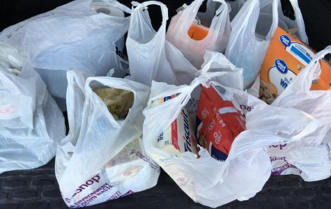 War Against Plastic: New Legislation to Discourage Plastic Bag Use in Suffolk County