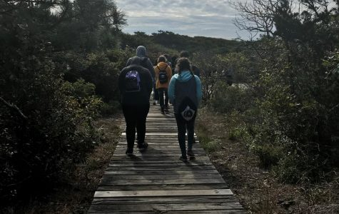 Monarchs and Mosquitoes: AP Biology Students Visit Fire Island