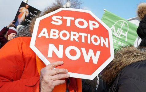 Tennessee State House Passes New Abortion Law