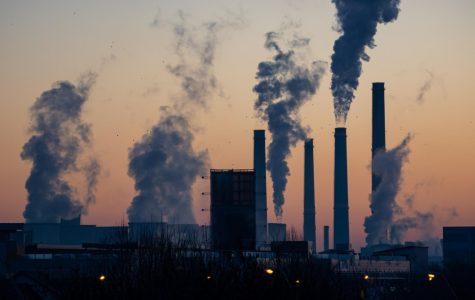 The Environmental Impact of COVID-19 Lockdowns